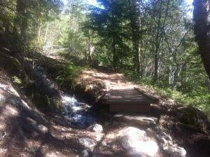 Mount Revelstoke.